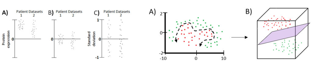 Support Vector Machine (SVM) Model