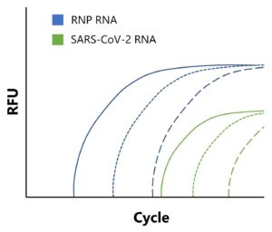 Multiplex detection of SARS-CoV-2 and human genes by qRT-PCR.